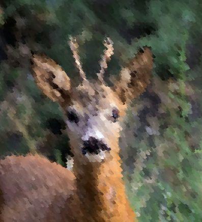 rehbock_gemalt_portrait